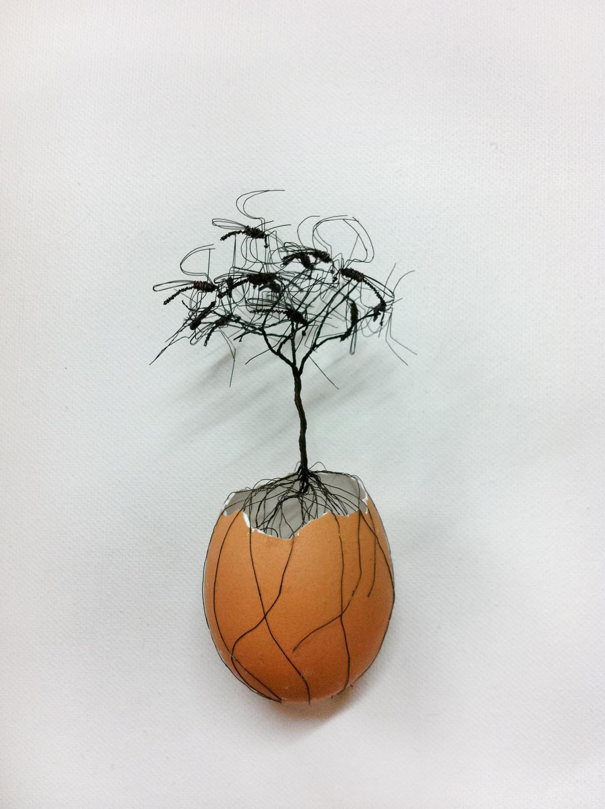 Opera dell'artista Daeyoung Kang