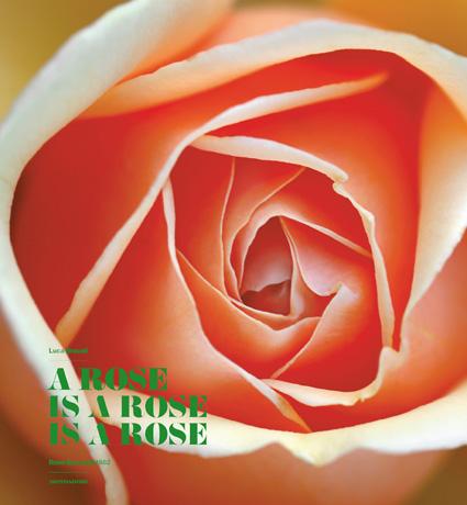 Copertina ROSE