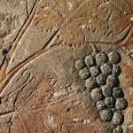 4 - rilievo egiziano del XIV sec. a.C. proveniente da Amarna, Hermopolis