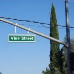 Paso Robles ed il real californian wine: atto primo