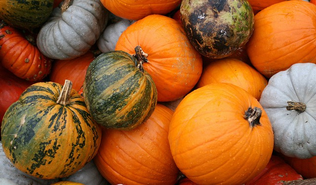 La Zucca in agrodolce dal sapore antico e genuino: ricetta Siculish per questo autunno