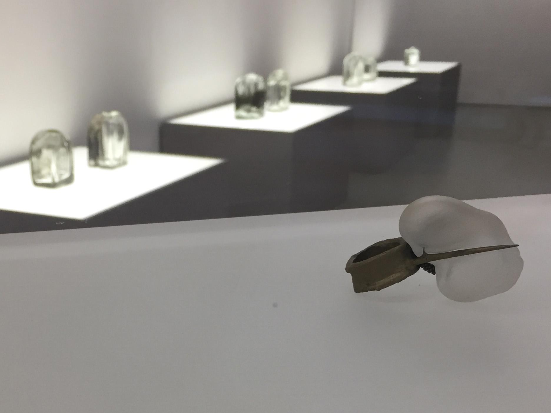 In primo piano: Argmento Spinoso, anello, 2013