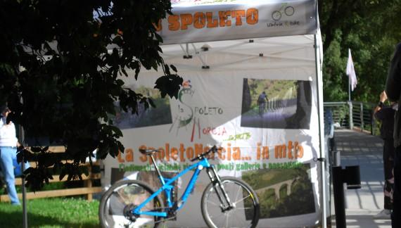 SpoletoNorcia 2018, intervista all'ideatore Luca Ministrini