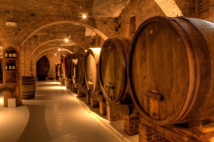 Le Donne del Vino, Antonella Cantarutti si racconta