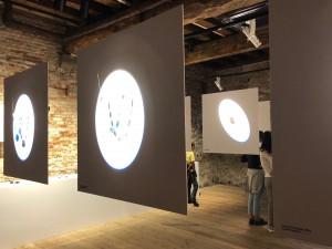 Stefania Lucchetta, veduta della mostra