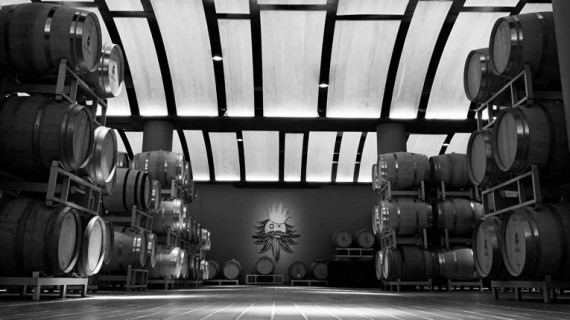Winery Tasting Jazz a Vallepicciola