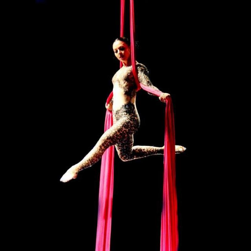 acrobatica aerea-batman