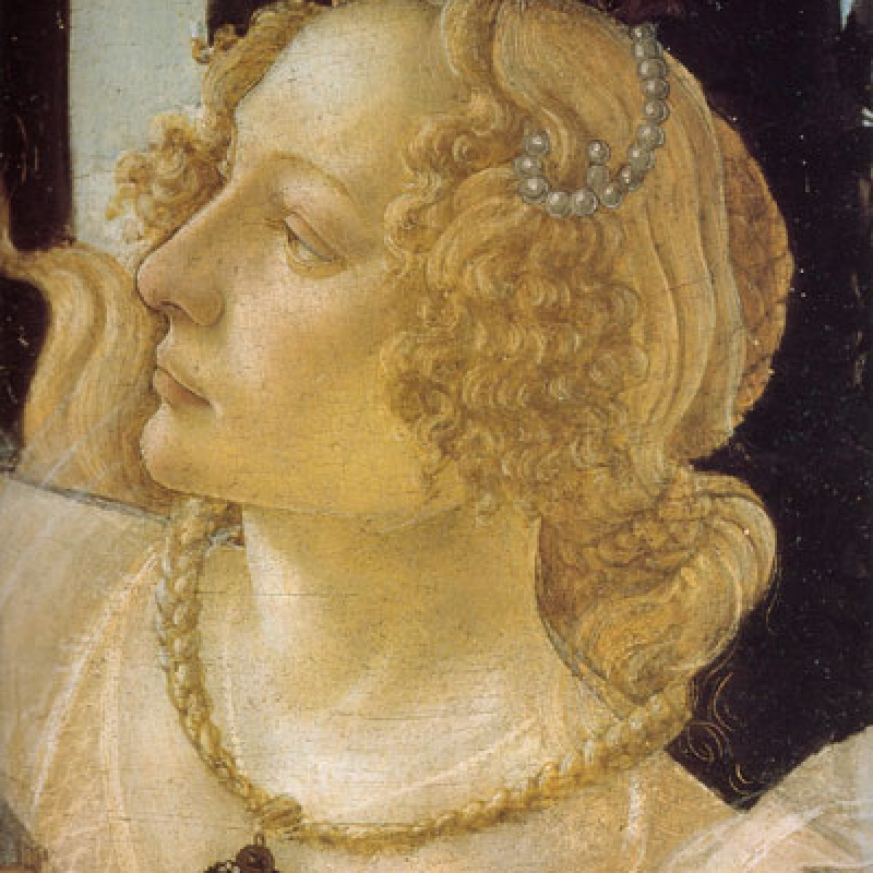 https://it.pinterest.com/friendsofuffizi/botticelli/
