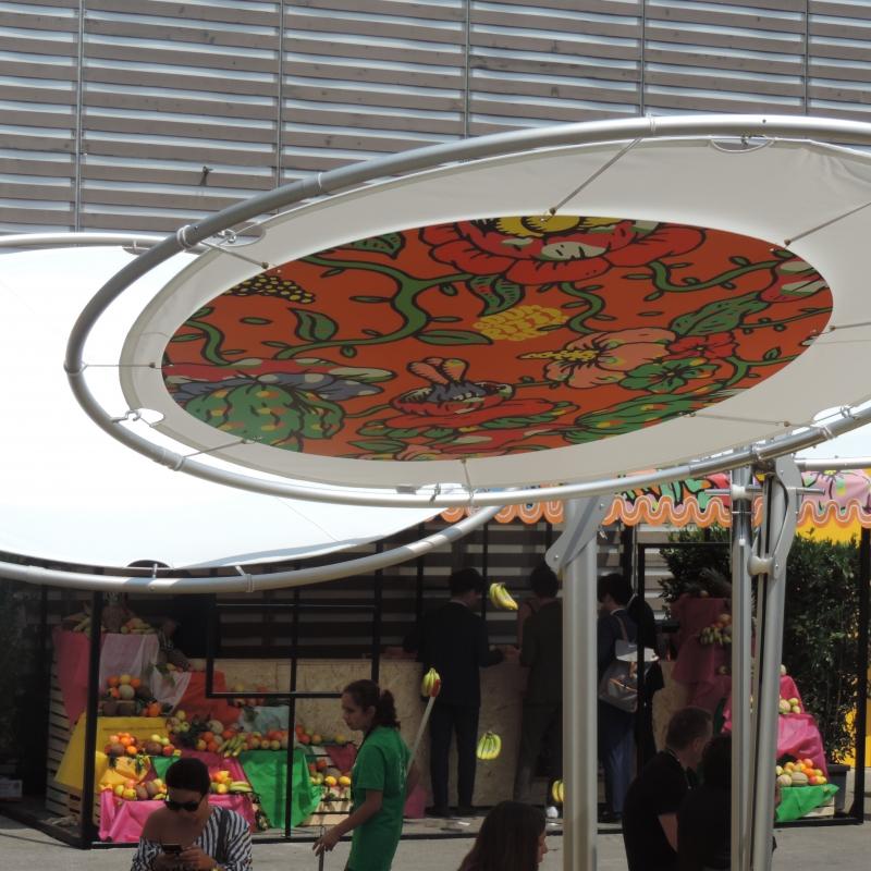 pitti blooms9