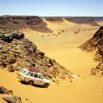 Il deserto è una malattia curabile
