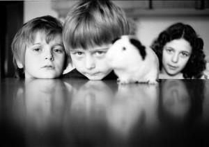 Val Trebbia 1983. VENT'ANNI DOPO.  Foto scattata da Giovanni con Nikkormat e pellicola Agfacolor 100