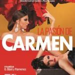 Superba prova di Flamenco al Teatro Duse
