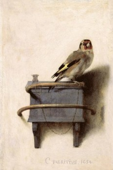 Carel Fabritius – Il cardellino
