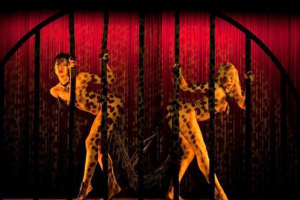 Il Crazy Horse, celebrazione della femminilità, ed i sui segreti svelati in un'intervista