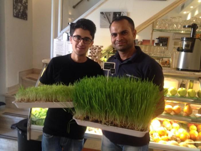 Bar Due Fontane: un'oasi biologica a due passi dal MAXXI