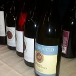 Autoctoni si nasce con Go Wine