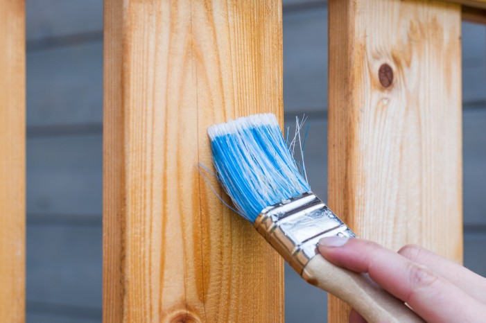 I Millennial si scoprono autonomi… almeno nella manutenzione di casa!