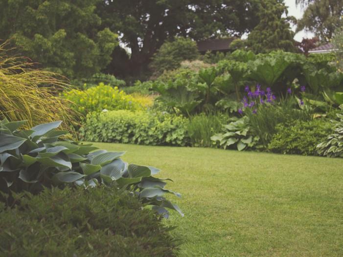 Home and garden, il giardinaggio oggi si fa sul Web