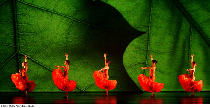 W Momix…Forever!