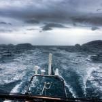 """Crossing Routes con Vaquita: andare per mare, un mare """"speciale"""""""