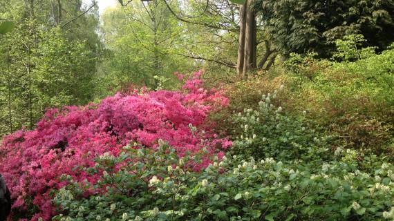 E' entrata la primavera con i trucchi Love's Nature
