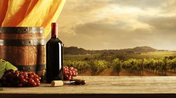 Cantine Aperte 2019, la Toscana apre le porte alla Cultura del Vino
