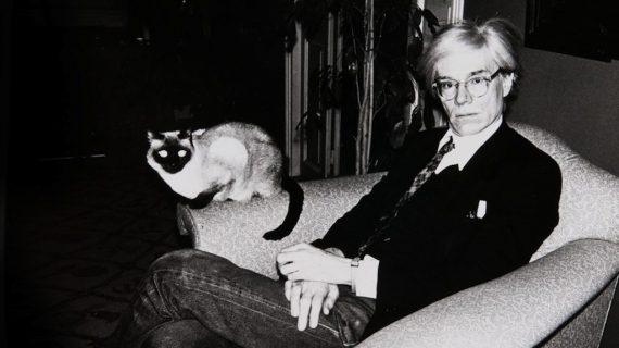 Mondo gatto. I gatti e la fotografia