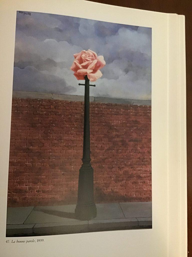 Magritte La Rosa nell'arte foto Mywhere