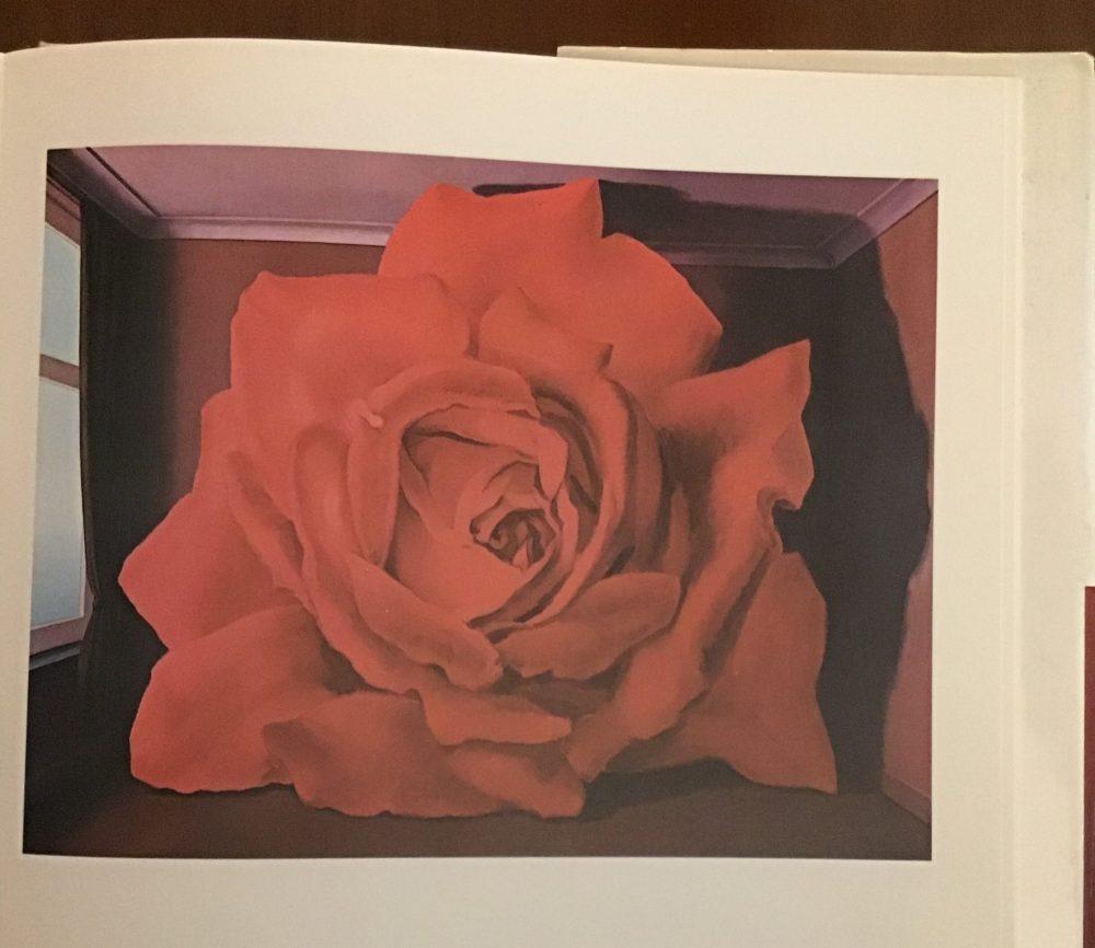 La Rosa nell'arte
