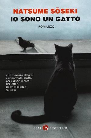 mondo gatto