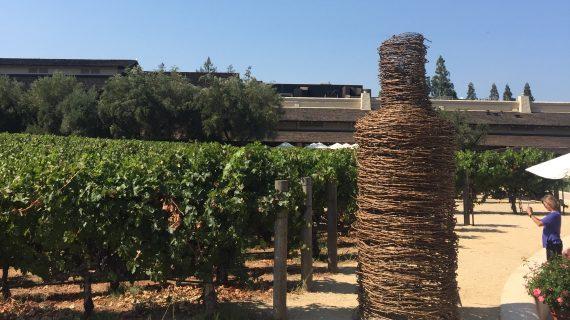 In Vino Veritas: ora tocca alle Donne del Vino