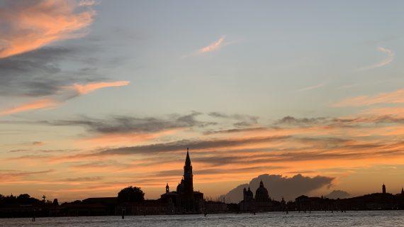 Un muro ci separa dal Red Carpet a Venezia 77 ma cosa siamo riusciti ad apprezzare?