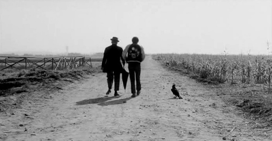 I migliori film italiani: mywhere