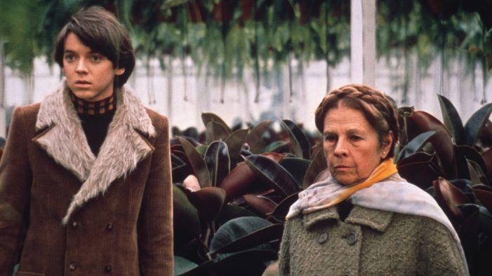 Harold e Maude: Recensione del film di Hal Ashby che insegna a non temere la morte