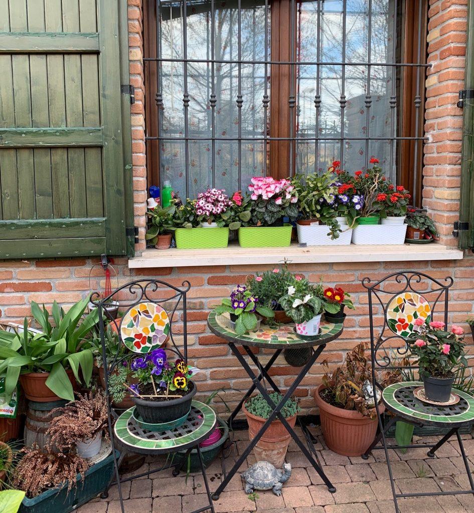 giardino consigli utili