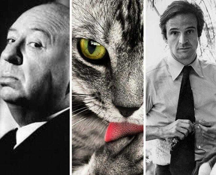 Mondo Gatto: i gatti nel cinema (inizio del percorso)