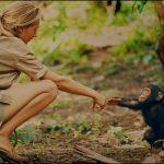 Jane Goodall e la tutela dei primati