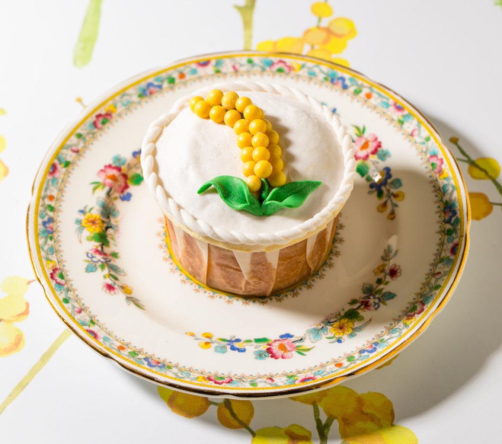 torta Mimosa intervista pasticceri
