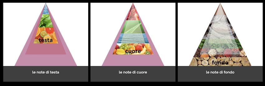 Piramide olfattiva GIORNATA DEL PROFUMO