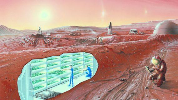 Prima di Perseverance: i migliori libri sul Pianeta Marte
