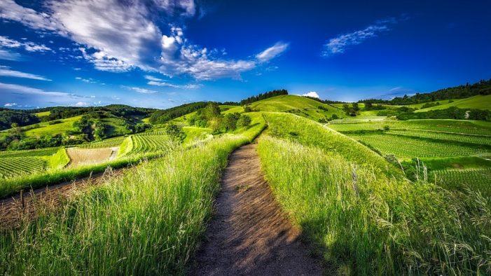 Tornano gli itinerari estivi nei luoghi iconici della Franciacorta