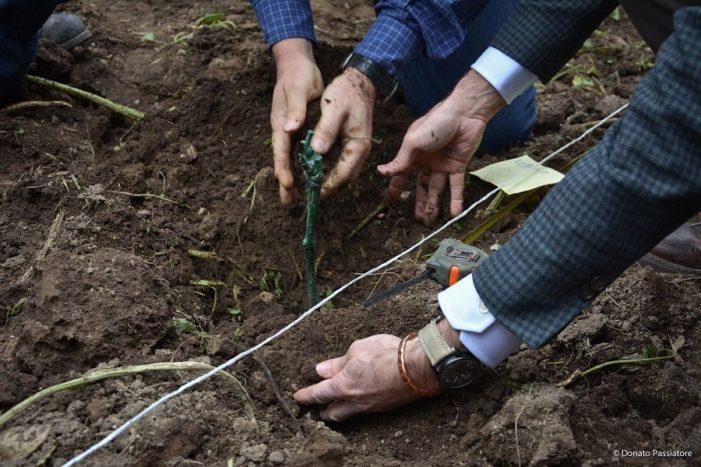Luca Maroni presenta I Migliori Vini Italiani 2021 e le iniziative all'insegna della biodiversità all'Orto Botanico di Roma
