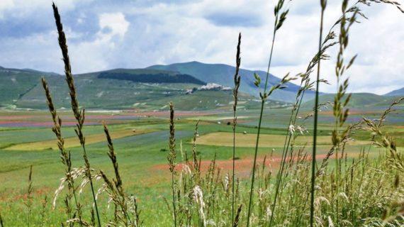 Turismo nelle Marche, una regione ancora da scoprire