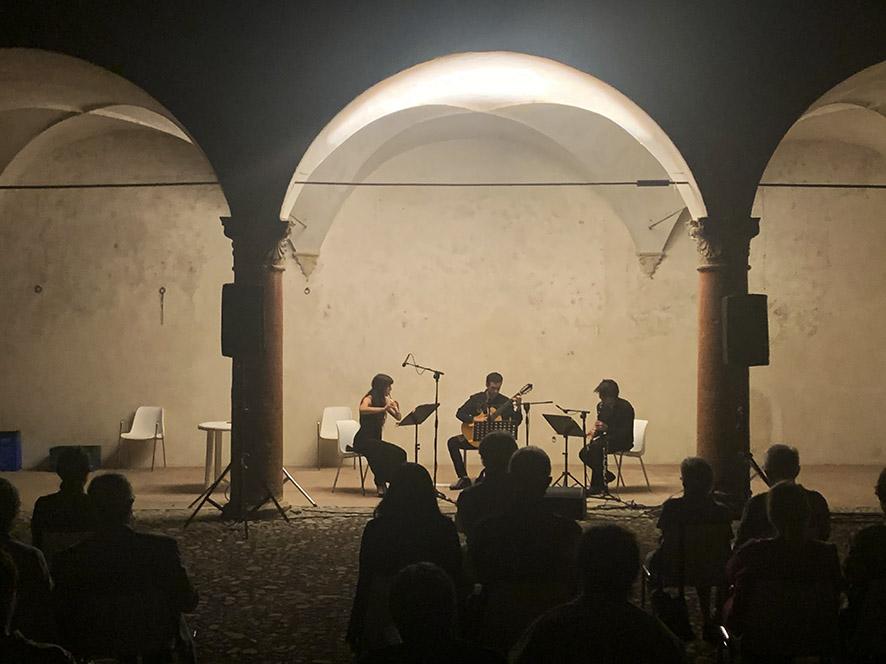 Helianthus Trio foto mywhere