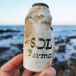 Archeoplastica: nasce il Museo degli Antichi Rifiuti Spiaggiati